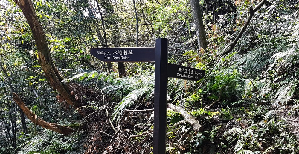 The non-signposted path takes you along the Canguangliao Branch Trail if you want a more challenging hike. But it does miss the large ruined dam