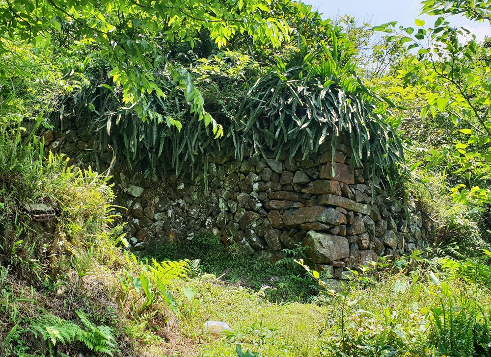 Old village house wall and the larger house