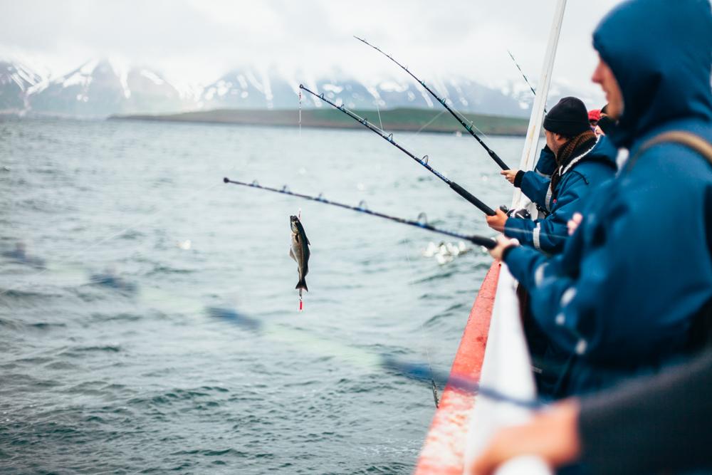 Iceland-Dalvik-7.28-30.14-880.jpg