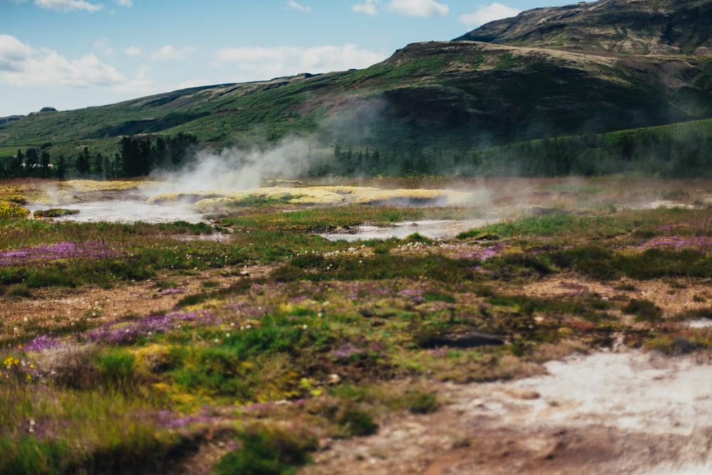 Iceland-reykjavik-golden circle-6.25-27.14-027.jpg