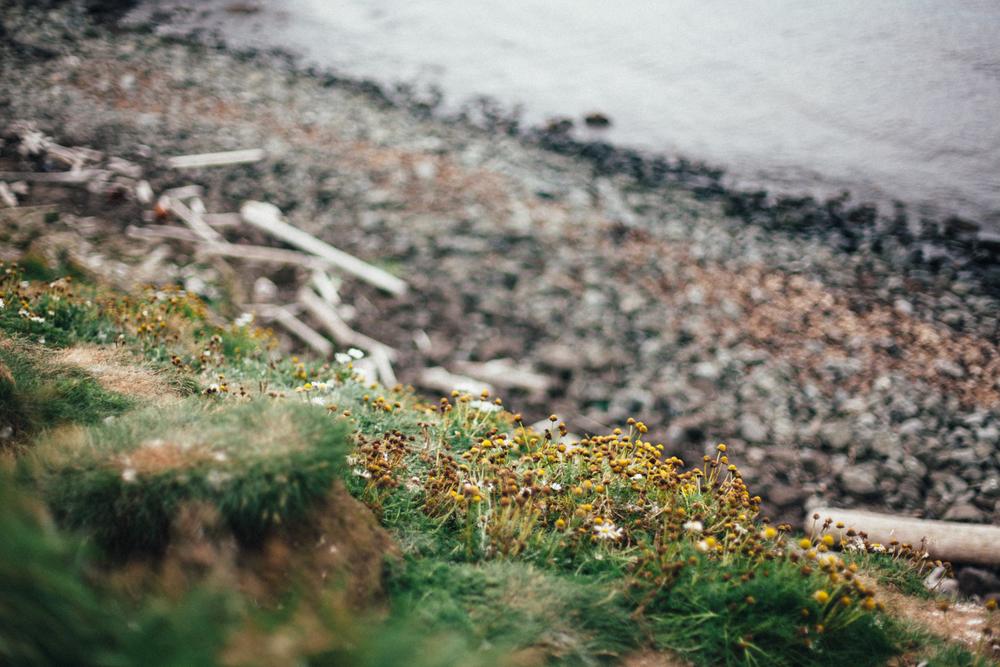 Iceland-Dalvik-7.30-8.1.14-998.jpg