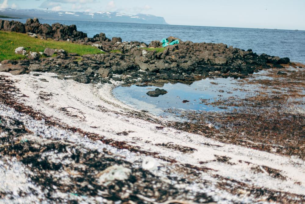 Iceland-holt-8.2-11.14-733.jpg