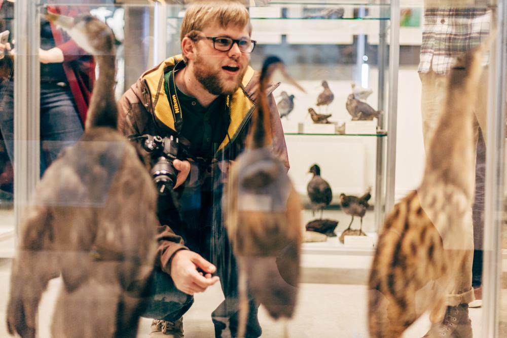 Iceland-holt-8.2-11.14-1021.jpg
