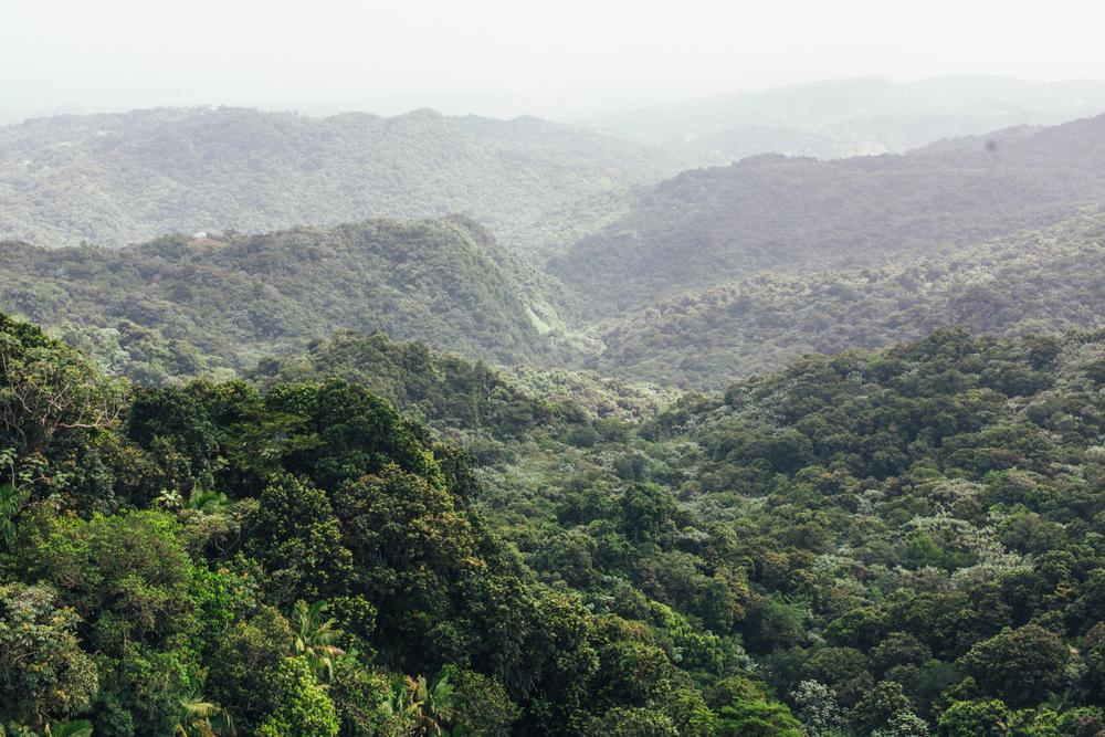 Puerto Rico 10.1-9.14-982.jpg