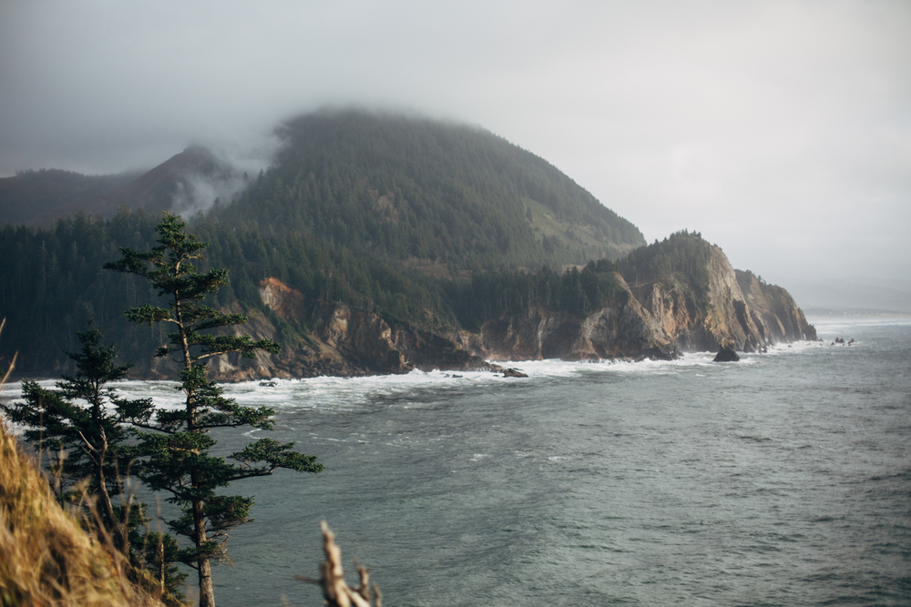 light and canon beach-falcon trail 2.2.15-205.jpg