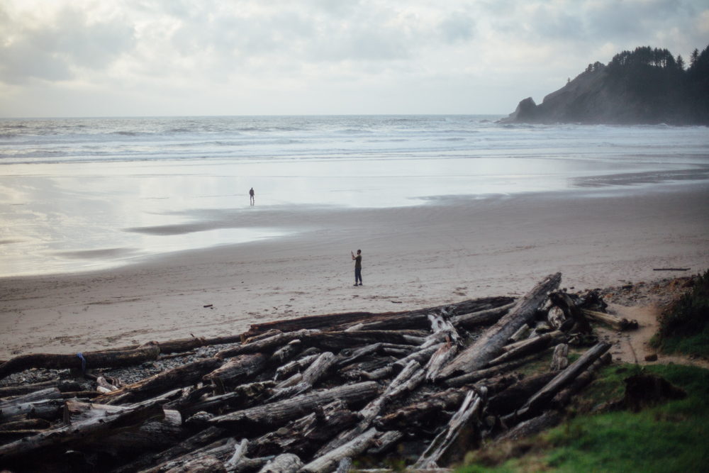 light and canon beach-falcon trail 2.2.15-358.jpg