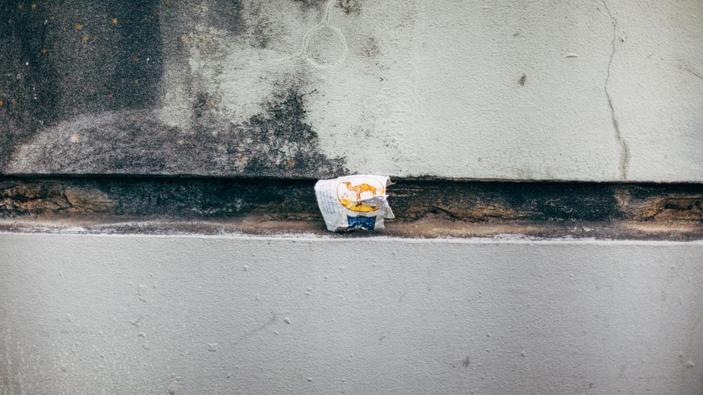 portland trash 4.25.15-235.jpg