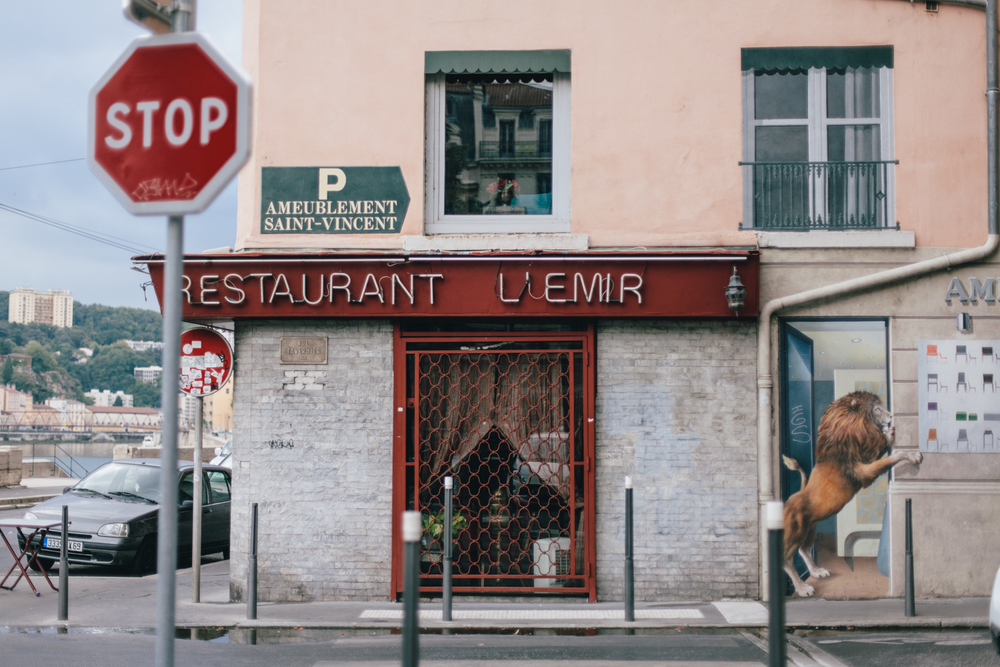 Lyon, France 2014