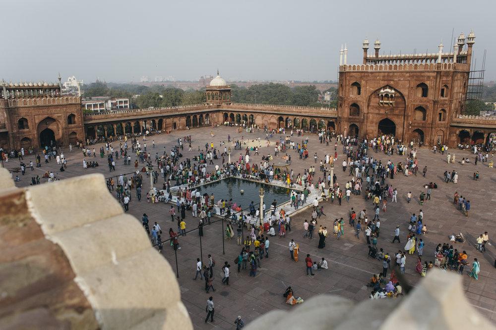11.1-3.16 DelhiAgra  00048.jpg