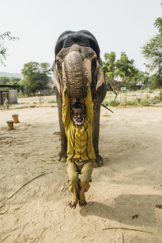 11.4.16 Jaipur 00417.jpg