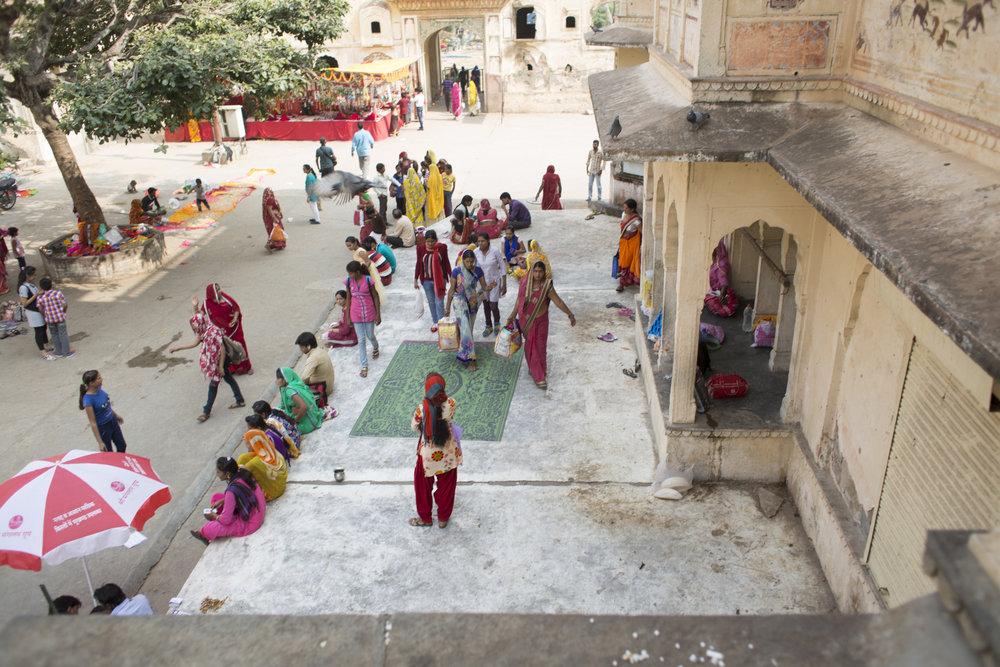 11.5.16 Jaipur 00226.jpg