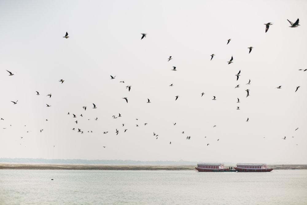 11.21.16 Varanasi 00099.jpg