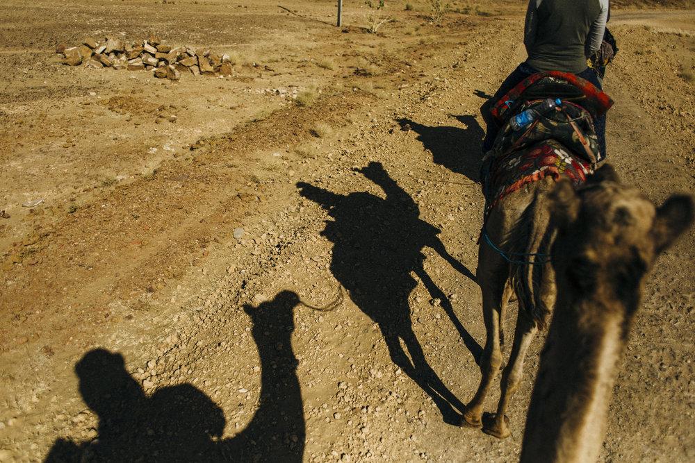 11.10.16 Jaisalmer Camel Safari 00038.jpg