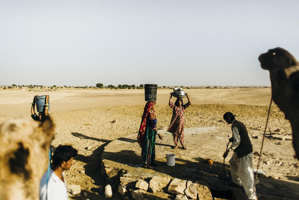 11.10.16 Jaisalmer Camel Safari 00093.jpg