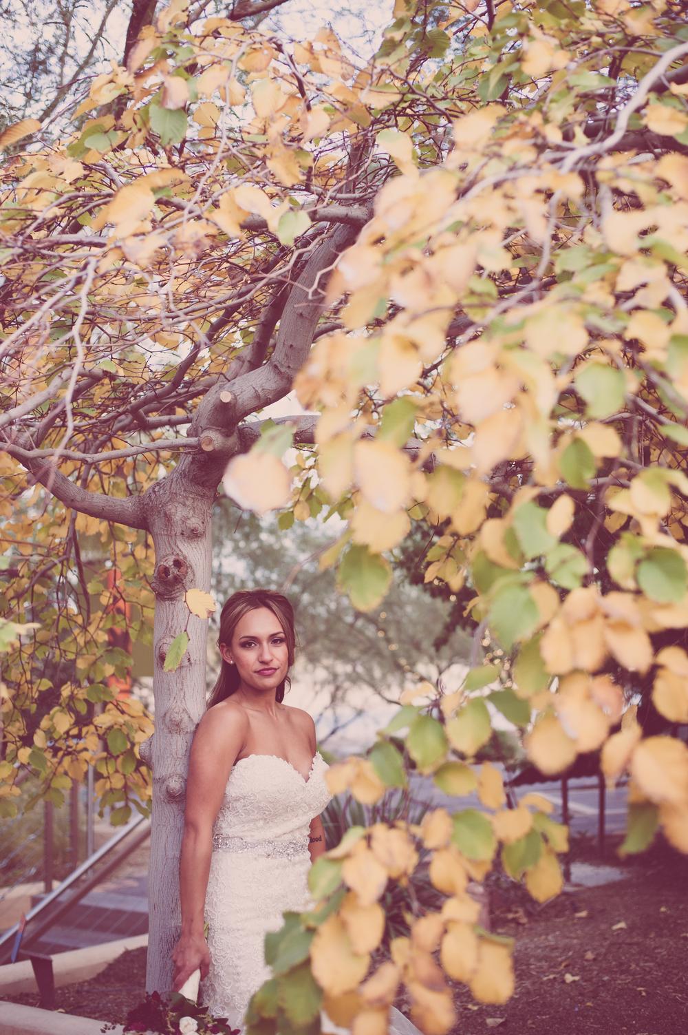 RomanoWedding_lasvegasweddingphotographer-2 (646).JPG