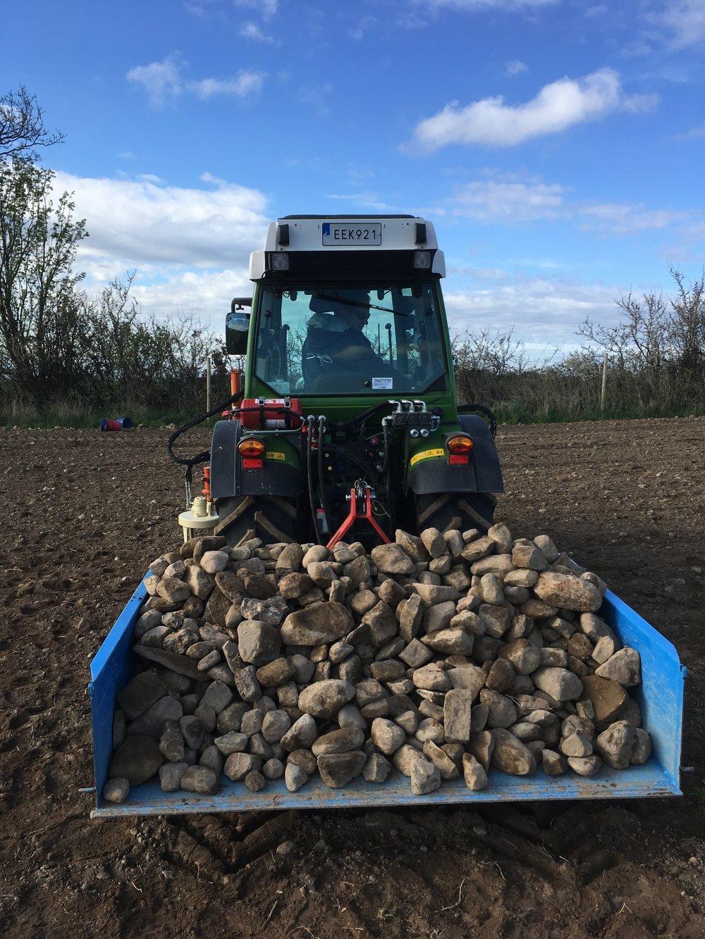Förbereder sju hektar för plantering