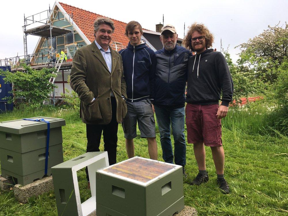 Vingårdsbin som pollinerar växter i och omkring vingården