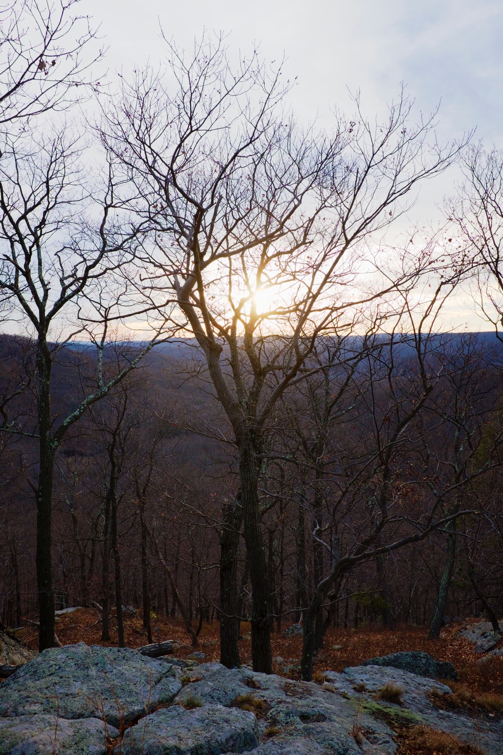 Fall Sunset Harriman State Park NY