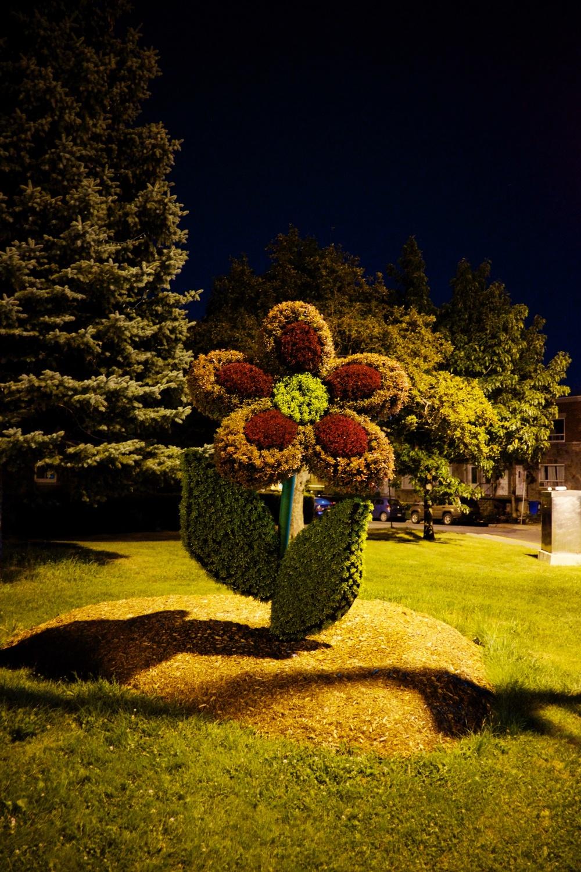 Lasalle Flower Sculptures Montreal