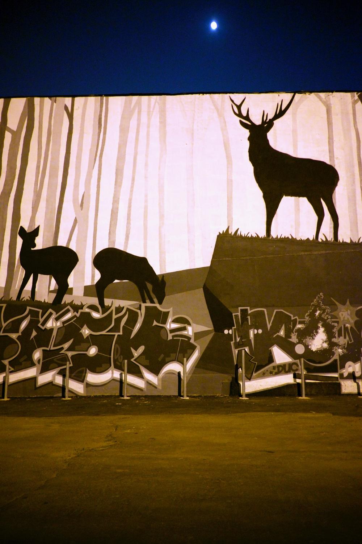 Deer Graffiti Montreal