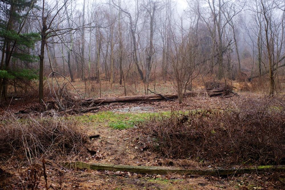 Stone Wall Camp Micheaux PA