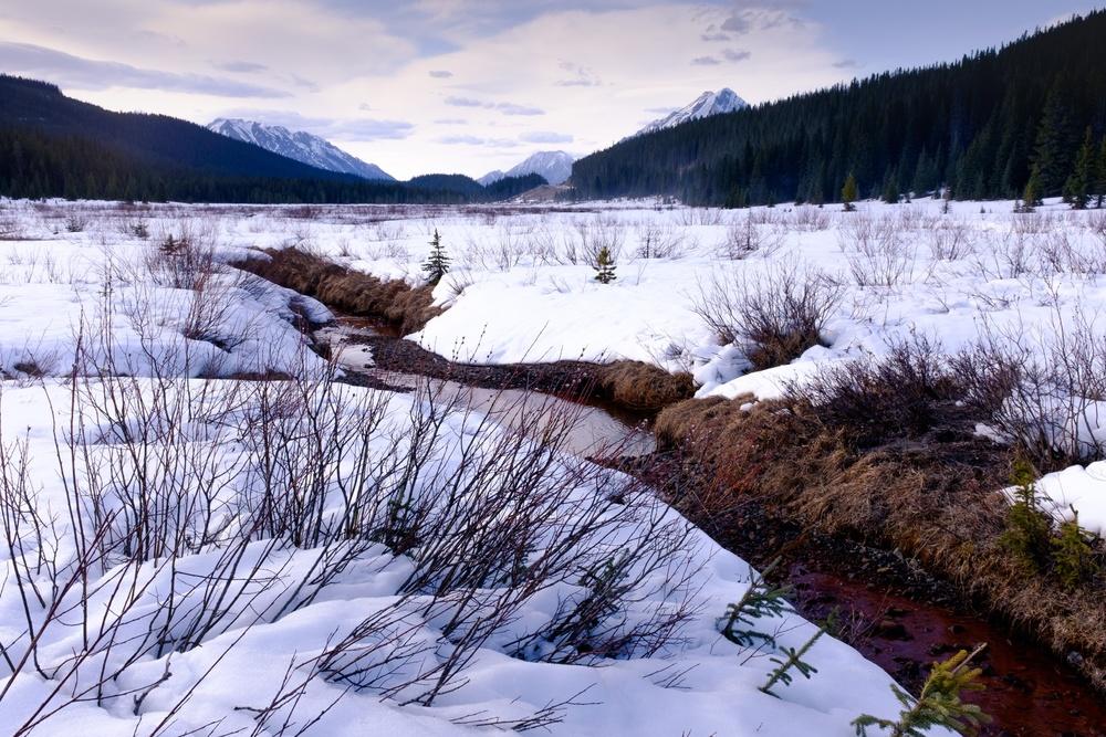 Red River - Peter Lougheed Provincial Park, Alberta