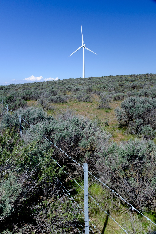 Rest Stop Washington Wind Farm