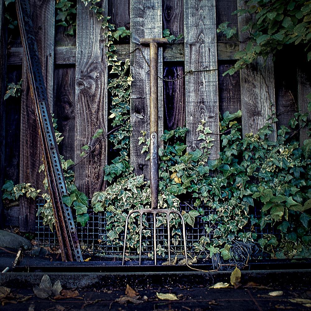 garden forks alicleary.com_4.jpg