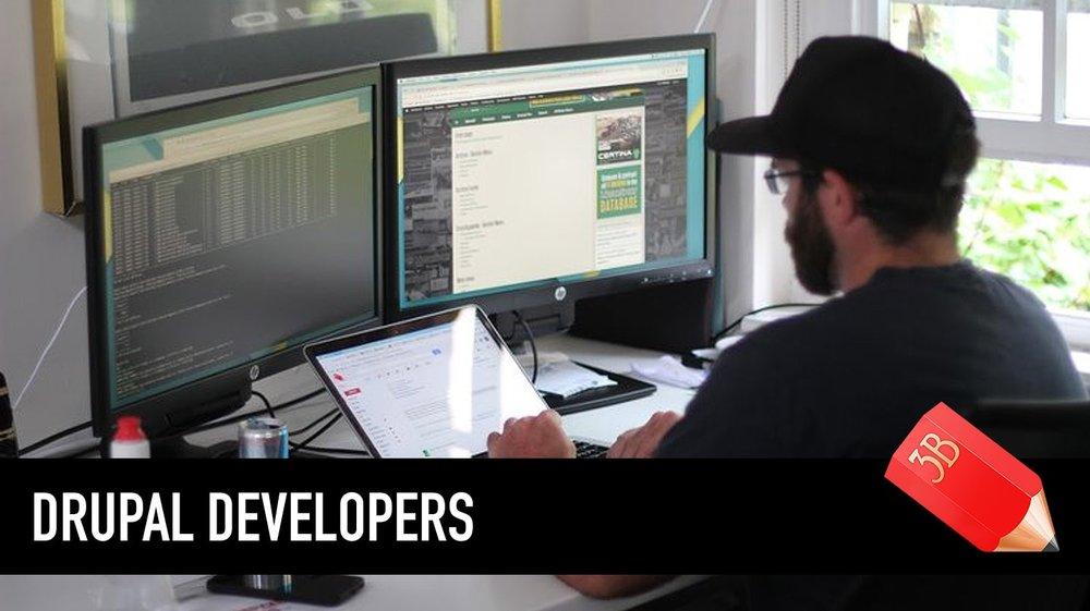 drupal-developers.jpg