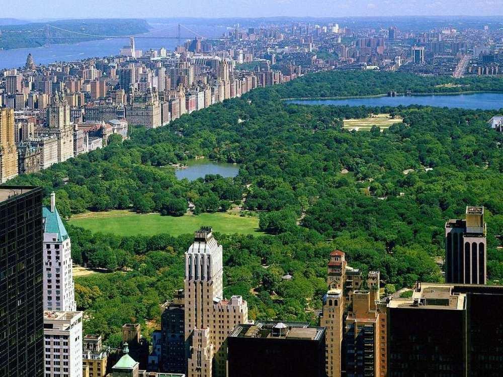 central-park1.jpg