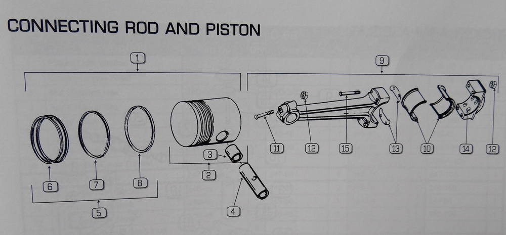 PISTON AND ROD ROD COMPLETE ASSEMBLY.
