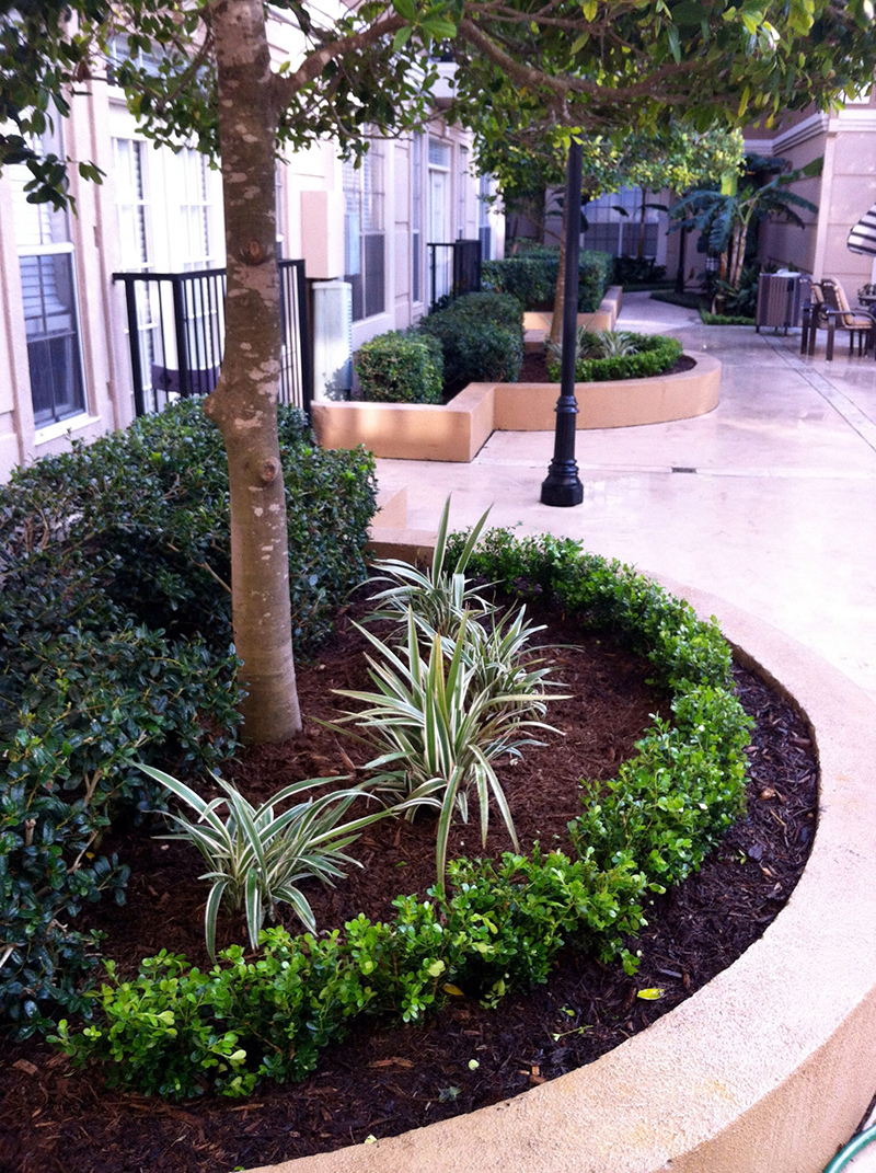 commercial-landscape-planter-installation-design-designer-architect-designs-houston-the-woodlands-cypress-spring-luxury-tomball-installer-install-custom-construction-new-retail-apartments-best-top-insured.jpg
