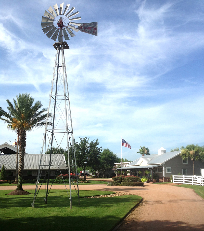 Country-ranch-with-crushed-granite-pathway,-sylvester-palm-and-large-windmill,-Cypress-Texas.jpg