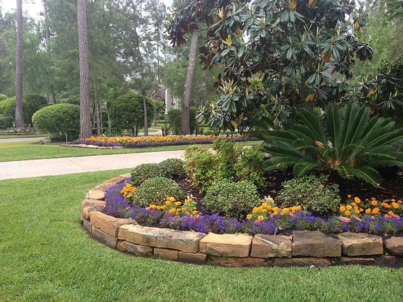 landscape-design-the-woodlands-carlton-woods-seasonal-planting-plants-landscaping-landscaper-install-installation-custom-best-top-luxury-stone-border-wall-spring-cypress-houston-woodforest-ideas-aggie-owned-magnolia.jpg