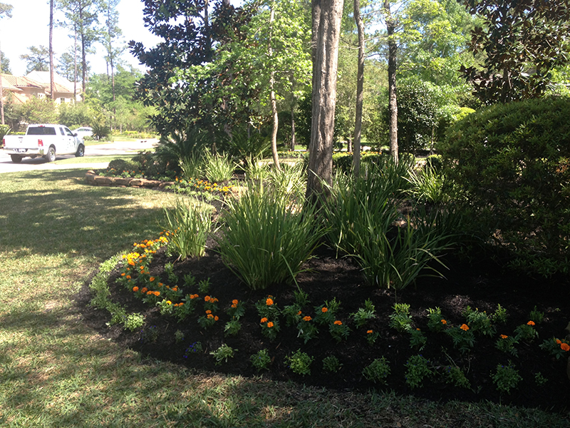 the-woodlands-carlton-woods-landscaper-landscape-design-builder-build-houston-tx-cypress-spring-beds-custom-luxury-lawn-care-maintenance-sprinklers-drainage-best-new.jpg