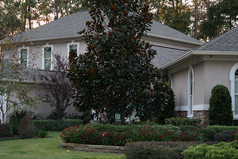 the-woodlands-tx-the-woodlands,-tx-spring-cypress-carlton-woods-lawn-care-landscaper-landscape-company-best-service-new-design-pool-builder-construction-irrigation-magnolia-stone-stacked-tree.jpg