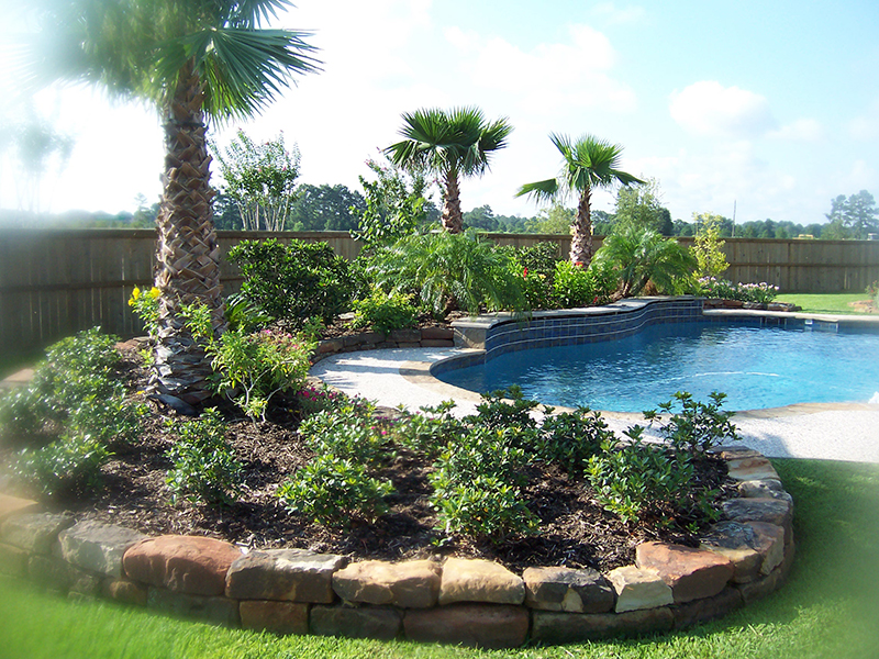 tropical-pool-landsacpe-install-palms-the-woodlands-spring-magnolia-stone.jpg