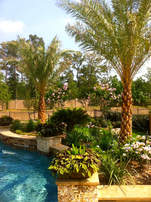 pool-mosaic-tile-low-bowl-planter-pottery-pool-columns-the-woodlands-carlton-woods-spring-envy.jpg