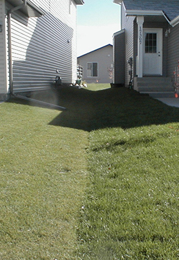 How to fix drainage problems in your yard envy exteriors for Yard drainage slope