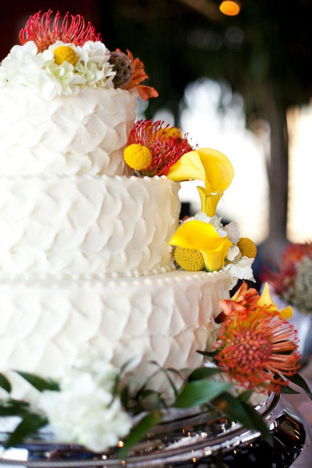 vanderklok wedding cake