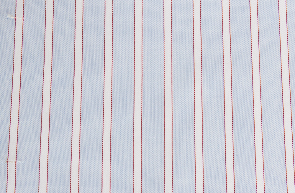 Awning Stripe with Border - Light Blue & Red.jpg