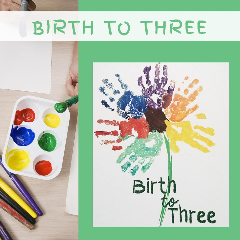 Birth to Three - The Birth-to-Three Program is a nationally recognized program that provides early intervention services to infants and toddlers and education and support to their families through a contract with the Tennessee Department of Education as well as significant funding from local communities in East Tennessee. Every $1 spent on early intervention realizes $9 - $14 cost-savings in future costs to education, social services, and judicial services.