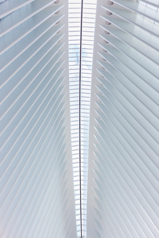 OculusWTC-34.jpg