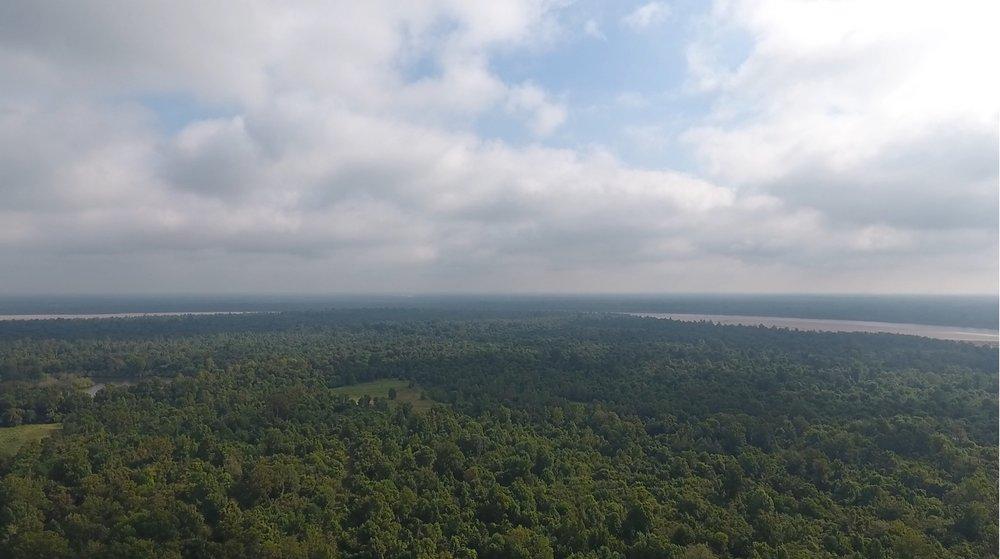 aerial7.jpg