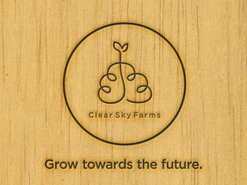 Clear Sky Farms - Vertical Farm Branding Branding, research, art direction, logo design
