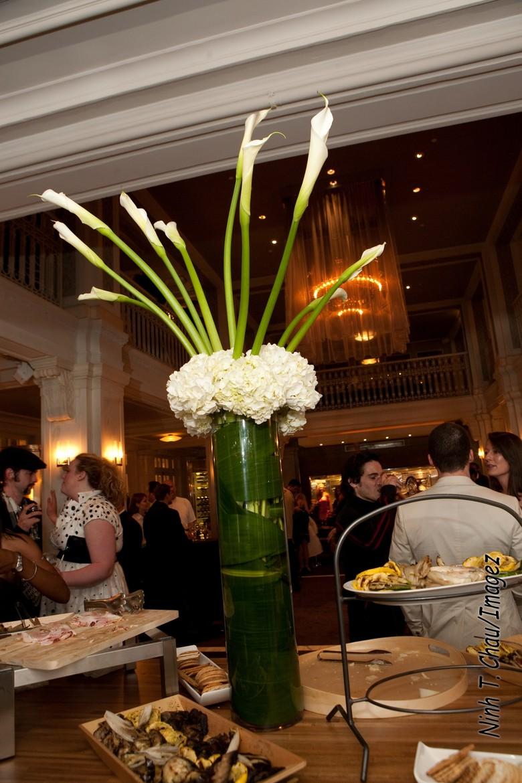 Atlanta fresh flowers indoor plants flower arrangements - Interior plant maintenance contract ...