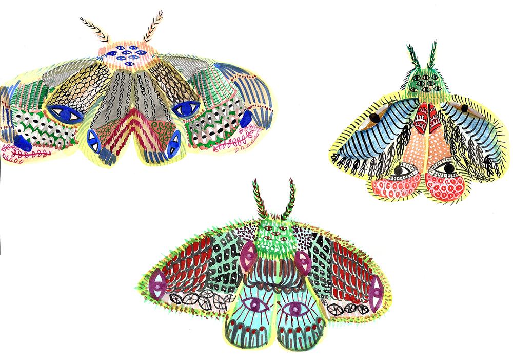 funny moths 100dpi.jpg