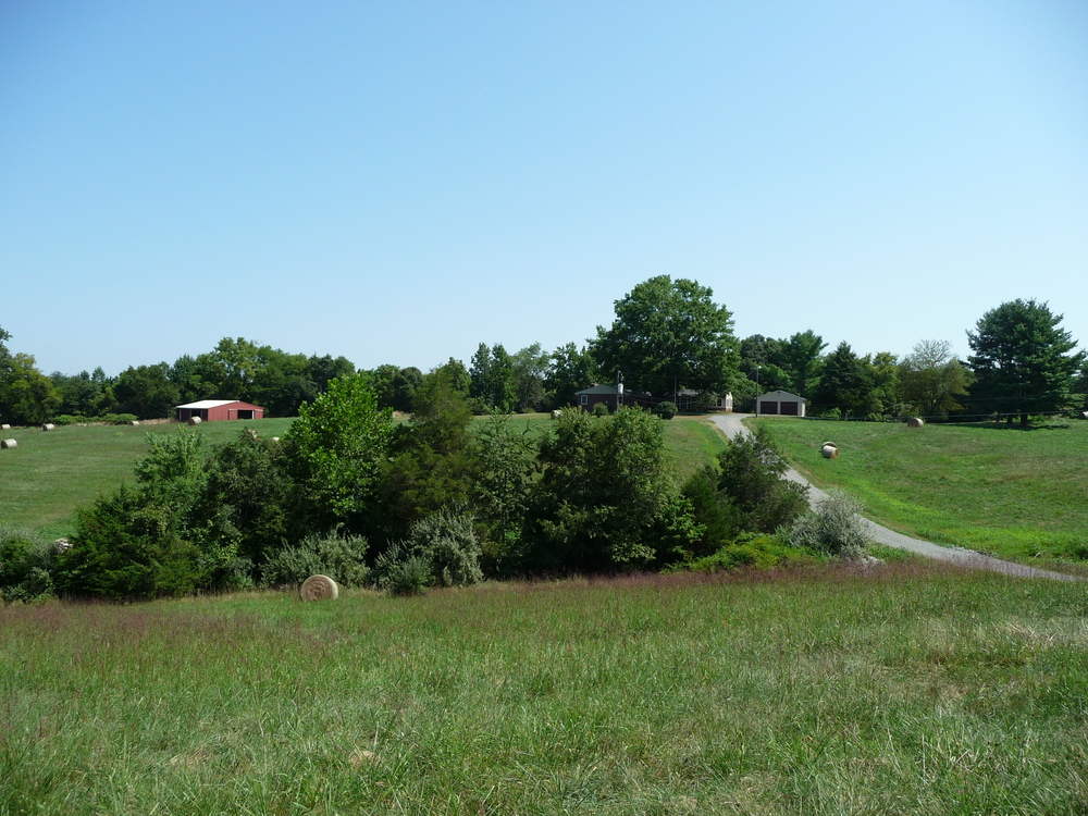 Small Culpeper Virginia Farm