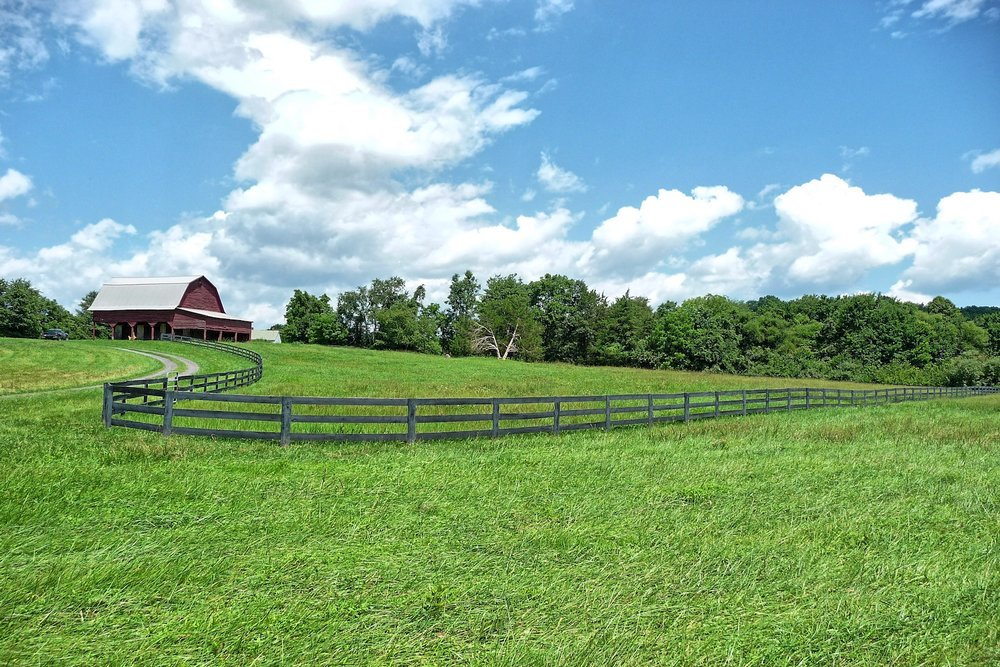 Big Run Farm - Boston, Va