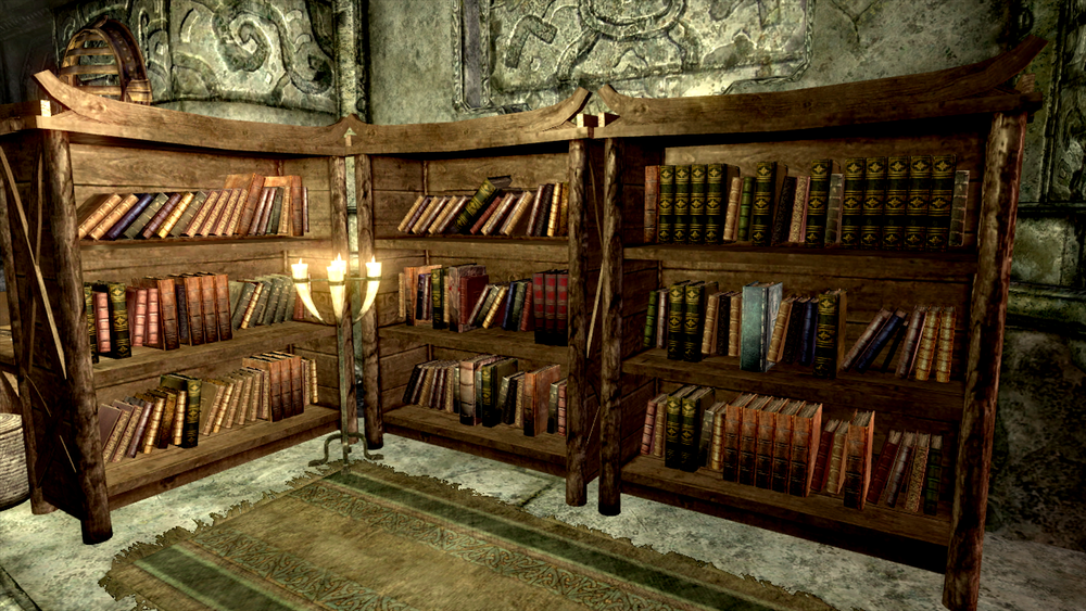 Almost every book in Skyrim